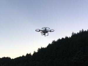 Drone & Picture